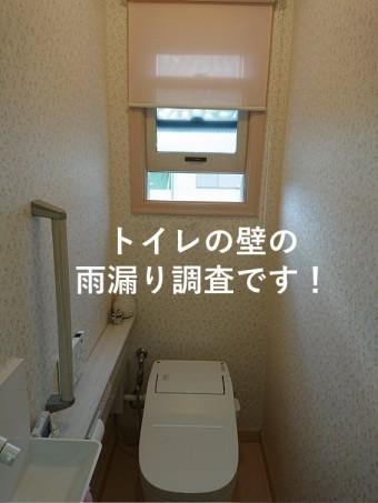 泉南市のトイレの壁の雨漏り調査