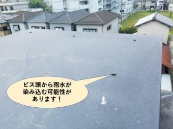 岸和田市の飾り煙突のビス頭から雨水が染み込む可能性があります