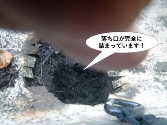 泉大津市の樋の落ち口が完全に詰まっています