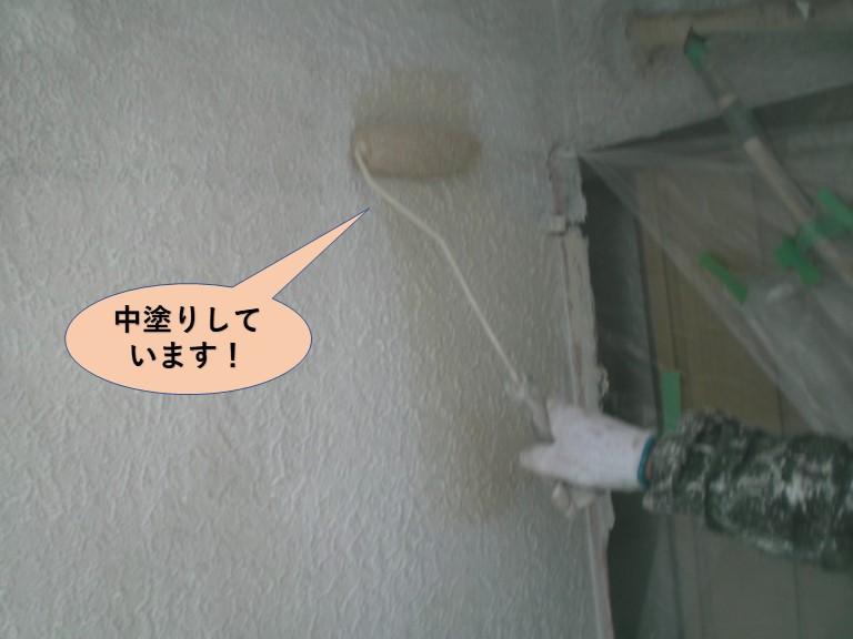 岸和田市の外壁を中塗りしています!