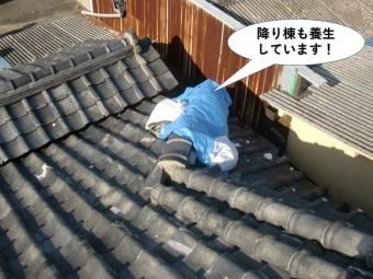 和泉市の降り棟も養生しています
