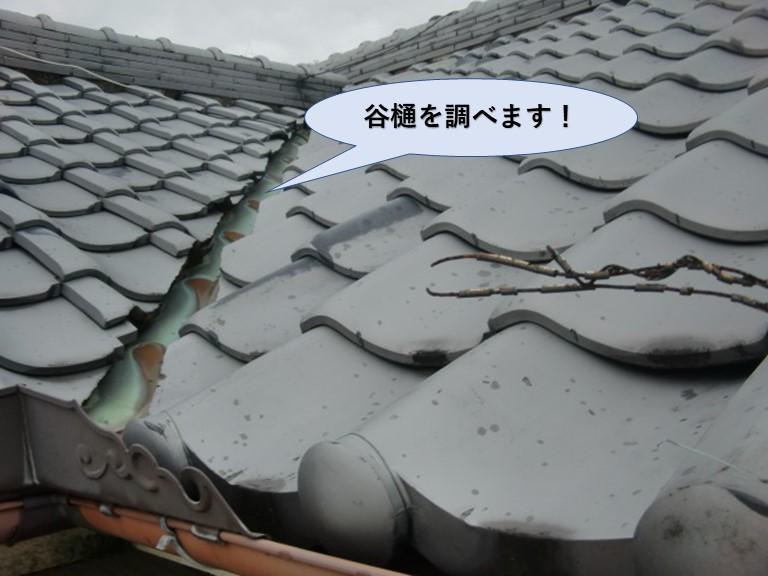 泉南市樽井の屋根の谷樋調査