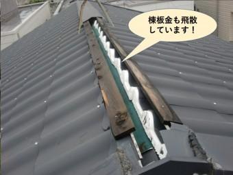 熊取町の棟板金も飛散