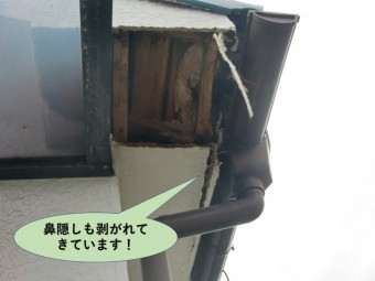 岸和田市の屋根の鼻隠しも剥がれてきています