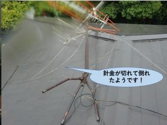 岸和田市のアンテナが針金が切れて倒れたようです
