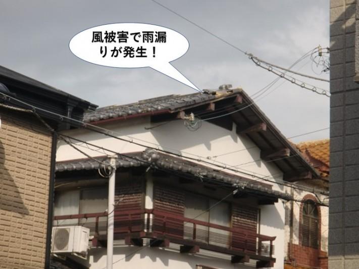 岸和田市の風被害の現地調査