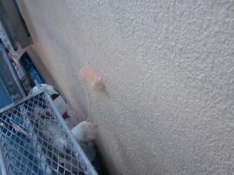 岸和田市西之内町の外壁上塗り