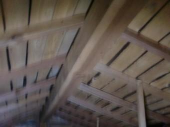 岸和田市流木町の雨漏り調査で小屋裏調査中