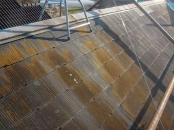 岸和田市下松町の屋根の苔現況