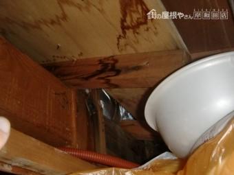 泉佐野市の一階の天井裏の雨漏り確認
