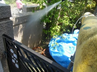 岸和田市天神山町の塀も洗浄