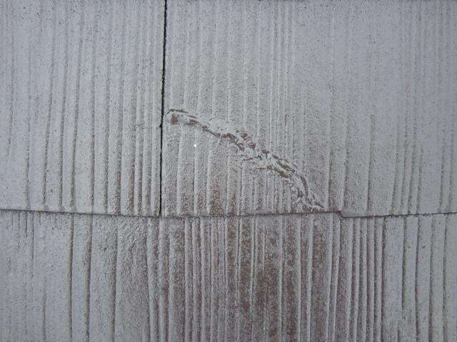 岸和田市極楽寺町のカビ除去もした外壁と屋根塗装完成