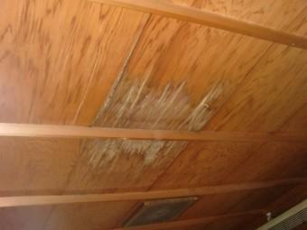 岸和田市の二階の和室天井の雨漏り調査