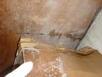 泉大津市の押し入れの中の雨漏り