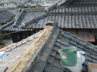和泉市の棟の動いている瓦をめくります