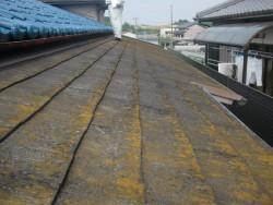 岸和田市の本宅の屋根現況