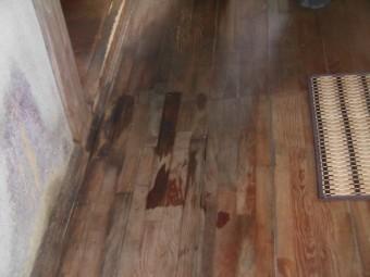 岸和田市包近町の廊下の床まで雨漏り