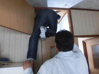 岸和田市流木町の雨漏り調査で小屋裏調査