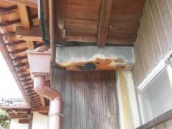 岸和田市の劣化して穴が開いた雨樋