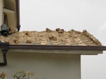 泉南市岡田の屋根の葺き土