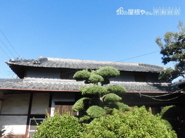 岸和田市の屋根