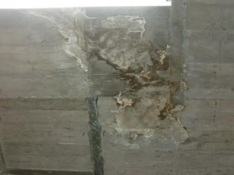 岸和田市の倉庫のスラブ下の天井の雨漏り現調