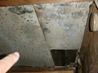 大阪市東住吉区の雨漏りで天井材の劣化