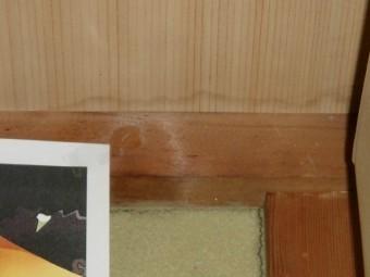 泉佐野市葵町の和室の天井に雨漏りの跡