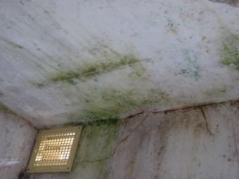 岸和田市のお風呂場の天井の雨漏りの可能性