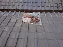 岸和田市の台風被害に遭った屋根
