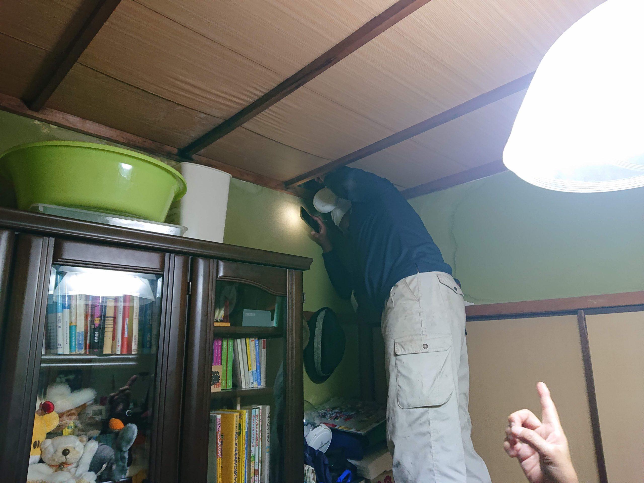 泉大津市の雨漏りの調査の様子