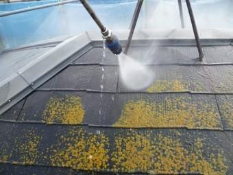 和泉市の苔も除去する高圧洗浄