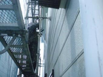 岸和田市包近町の外壁高圧洗浄