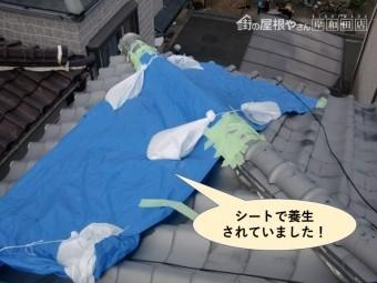 泉南市の屋根をシートで養生していました!