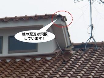 和泉市棟の冠瓦が飛散