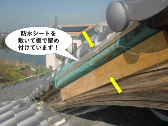 岸和田市の棟に防水シートを敷いて板で留め付けています