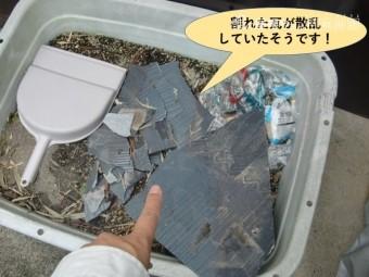 岸和田市の屋根の割れた瓦が散乱していたそうです