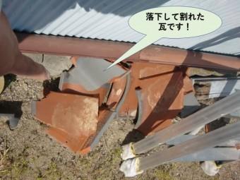 岸和田市の落下して割れた瓦です