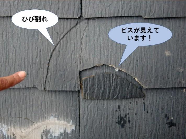 熊取町のスレートを留めている釘が見えています