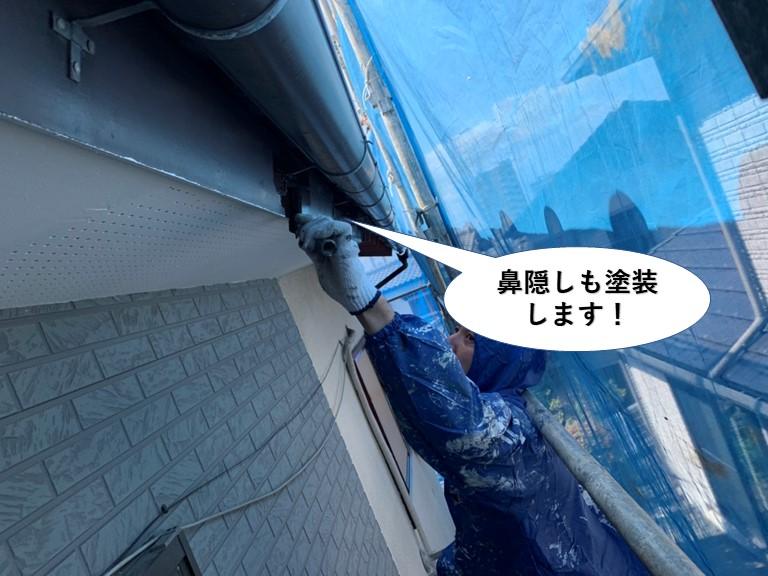 貝塚市の鼻隠しも塗装します