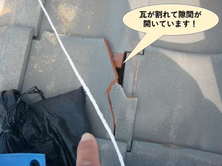 阪南市の瓦が割れて隙間が開いています