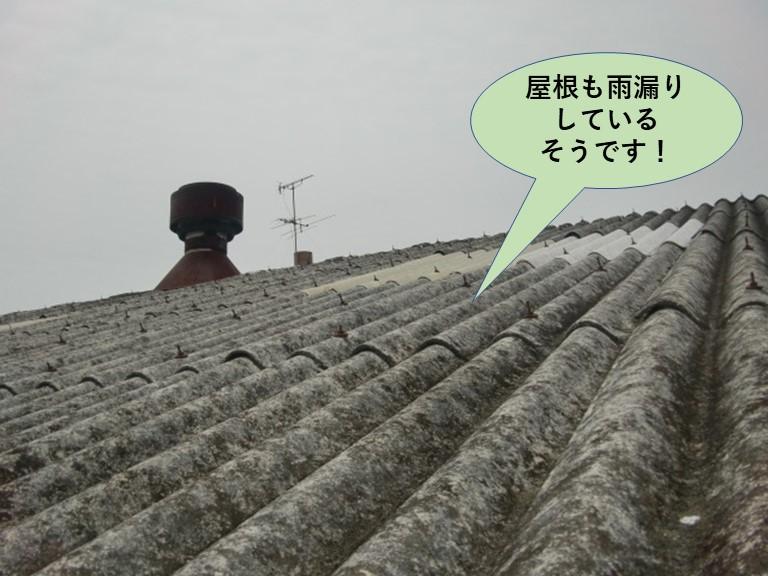 和泉市の工場で屋根も雨漏りしているそうです