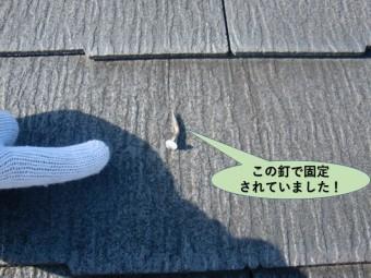 阪南市の屋根の瓦を留めている釘