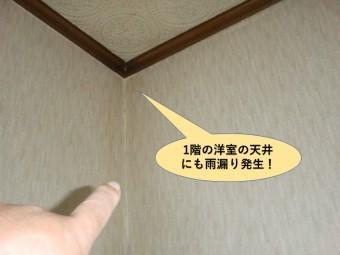 塚市の1階の洋室の天井にも雨漏り発生