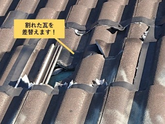和泉市の割れた瓦を差替えます