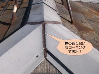 岸和田市紙屋町の棟同士の取り合いも防水