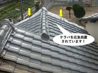 和泉市のケラバを応急処置
