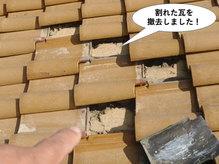 和泉市の割れた瓦を撤去