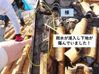 和泉市の屋根から雨水が浸入し下地が腐食