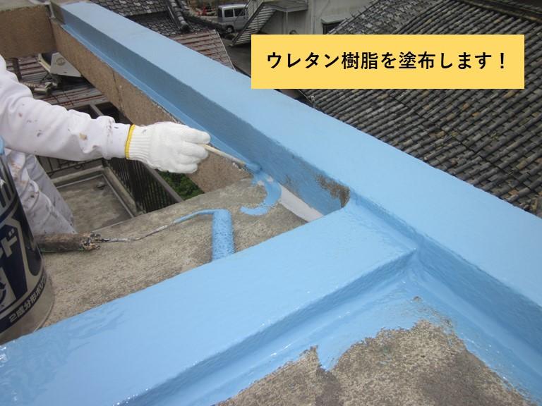 和泉市の陸屋根にウレタン樹脂を塗布します